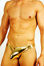 Sexy Men's Shiny Metallic Thong #140